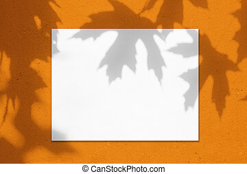 Empty white horizontal rectangle poster mockup with maple tree leaves shadows