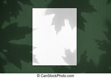 Empty white vertical rectangle poster mockup with maple tree leaves shadows