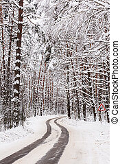 Empty winding road in winter forest. Quiet winter landscape