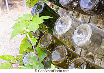 empty wine bottles in a wooden rack