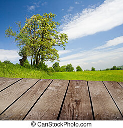 empty wooden deck table in the park.
