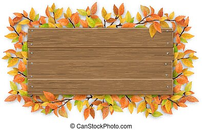 empty wooden sign with color autumn tree branch