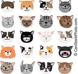 emtions, 面白い, 猫の表面