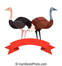 emu and ostrich on white background