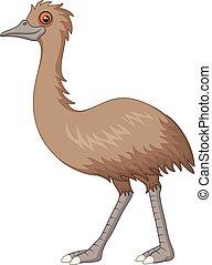 emu, blanco, aislado, plano de fondo, caricatura