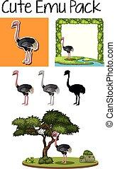 emu, lindo, paquete