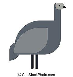 emu, plano, ilustración