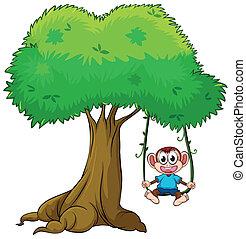 en, abe, spille, svinge, på, træ
