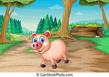 en, gris, hos, den, skov