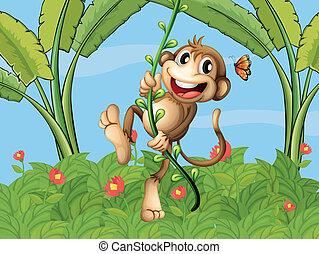 en, hængende, abe