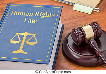 en, juridisk bog, hos, en, gavel, -, menneske ret, lov