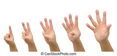en, sätta, hand, fem, numrerar, räkning, gest, man