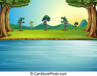 en, skov, hos, en, flod