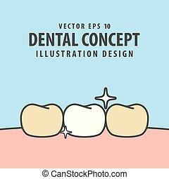 Enamel tooth illustration vector on blue background. Dental concept.