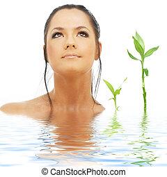 encantador, morena, com, bambu, em, água