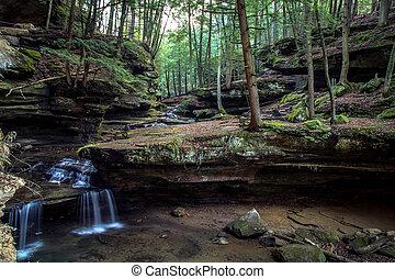 enchanté, forêt, chute eau