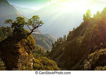 enchanté, népal, paysage