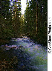 Enchanted Brook 754 - Mountain brook, overflowing with ...
