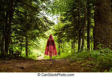 Enchanted forest and path