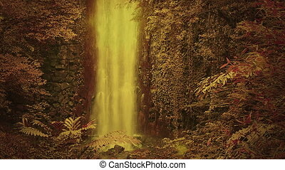 Enchanted forest with waterfall - waterfall in golden light...