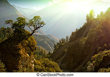 enchanted Nepal landscape - fairy morning sunlight on...