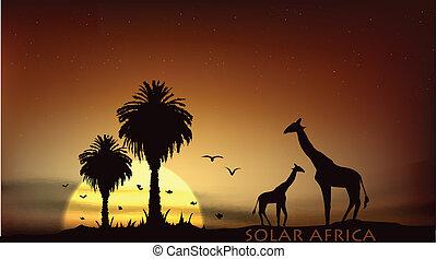 encima, árboles, jirafa, africano, salida del sol, sabana