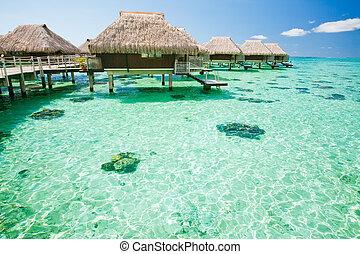 encima, agua, asombroso, bungalow, pasos, laguna