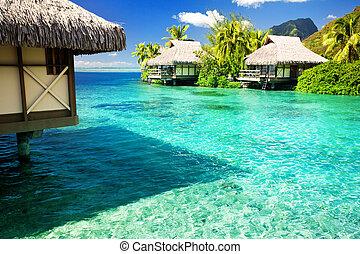 encima, bungalows, agua, asombroso, pasos, laguna