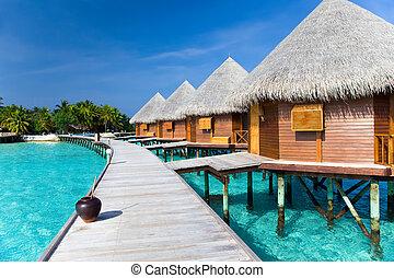 encima, camino, de madera, océano, maldives.
