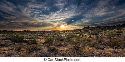 encima, desierto, ocaso, sonoran
