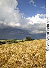 encima, nubes, warwickshire, lluvia