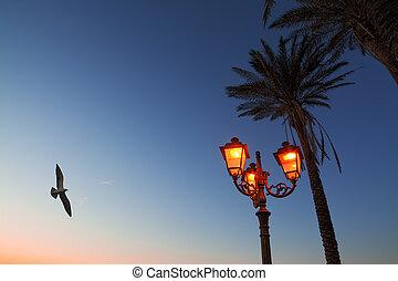 encima, vuelo, lamppost