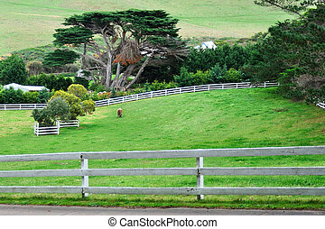 Enclosure field on hill - Calf enclosure filed on hill with...