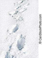 encombrements, étapes, blanc, pistes, profond, traces, neige, humain