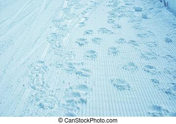 encombrements, neige