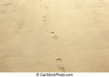 encombrements, sable plage, humain