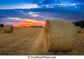 End of day over field with hay bale in Hungary- This photo...