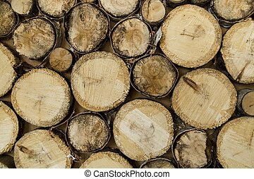 end of old logs, decor wall