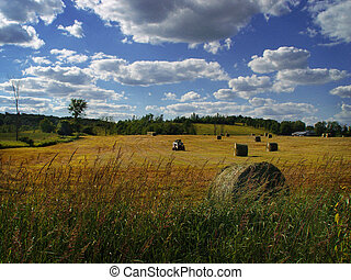 End of the day - The farmers field. Ontario, Canada