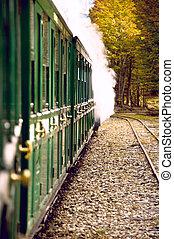 End of World Train (Tren fin del Mundo), Tierra del Fuego, Patagonia, Argentina