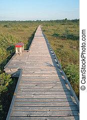 Endless boardwalk over peat bog