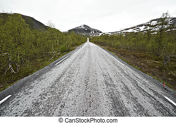 endless road Scandinavia