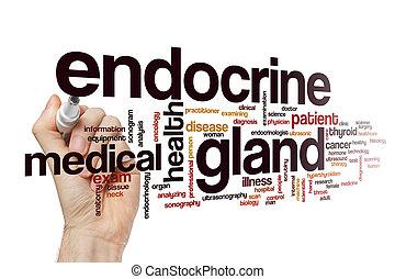 Endocrine gland word cloud