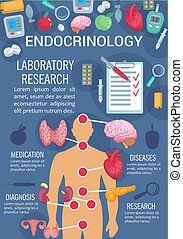 Endocrinology poster with human endocrine system
