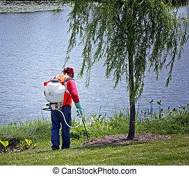 enduisage, pelouse, produits chimiques