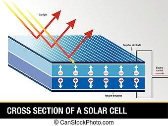 energía, sección, -, cruz, célula, vector, solar, imagen,...