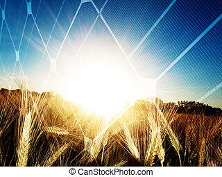 energía solar, concepto