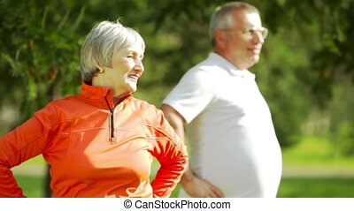 Energetic elderly people exercising in the park together
