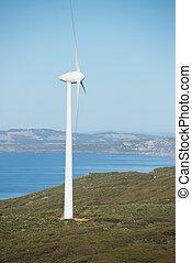 energia, australia, rinnovabile, vento