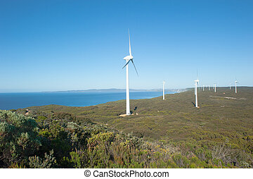 energia, australia, rinnovabile, vento, occidentale